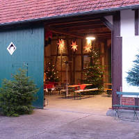 Weihnachtsbaumschlagen auf dem Pflanzenhof Woltering - Cateringservice Münster - Stefan Hüls